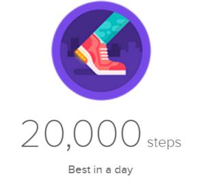 20000 Steps